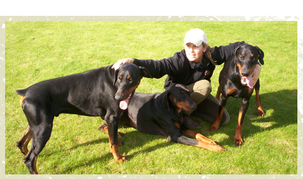 Kennels and Cattery - Milton Keynes, Buckinghamshire - Villiers Farm Kennels & Cattery - two black dogs with trainer<br />